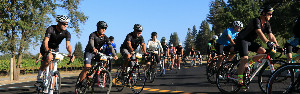 Tour de Fox Wine Country @ Kendall-Jackson Wine Estate & Gardens | Santa Rosa | California | United States
